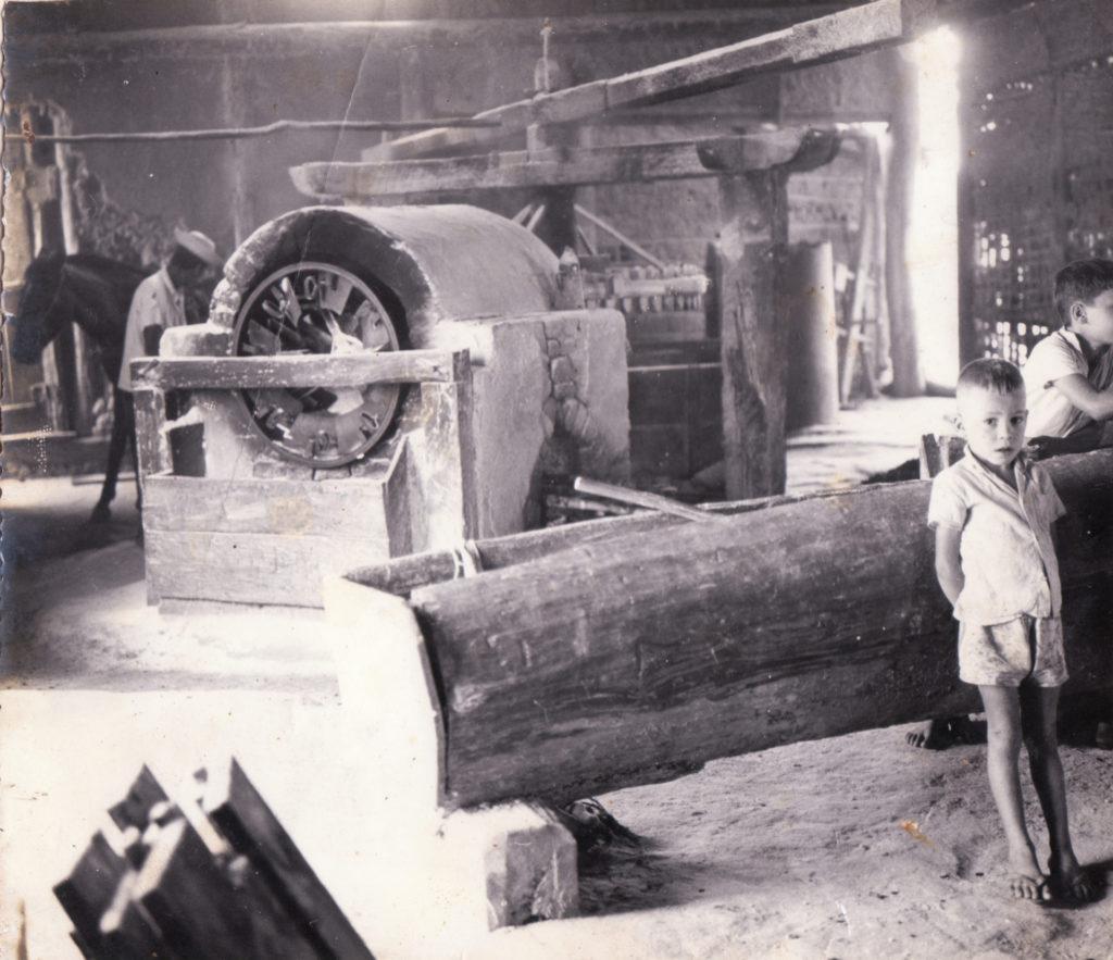 Engenho de farinha - Torragem