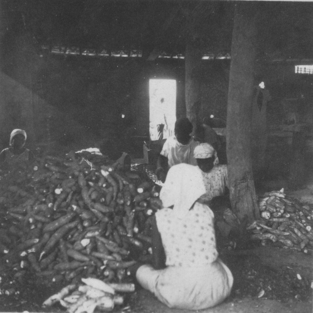 Engenho de Farinha - Raspando mandioca
